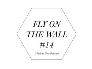 Manisha Gera Baswani Fly on the Wall 14-1